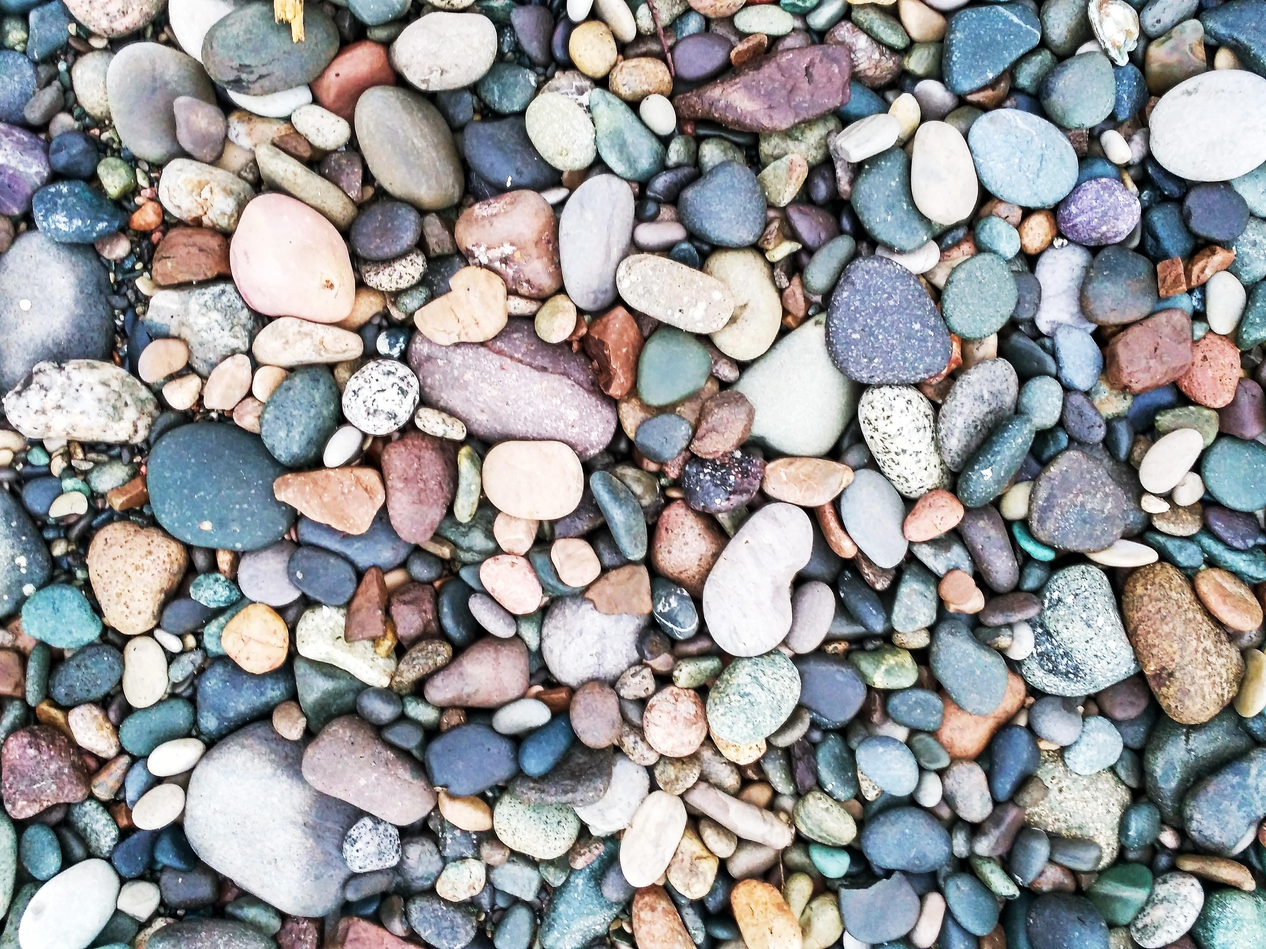 Böbrek taşları